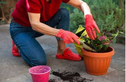 A tisztítás hiánya fertőzéshez vezethet! - Esetbemutatás
